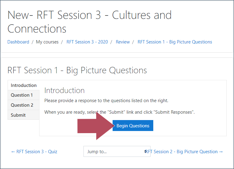 "Example BPQ activity page, displaying the ""Introduction"" tab and instructions: 'Please provide a response to the questions listed on the right. When you are ready, select the ""Submit"" link and click ""Submit Responses""', and with an arrow indicating the ""Begin Questions"" button"